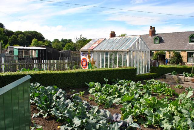 beamish pit village garden